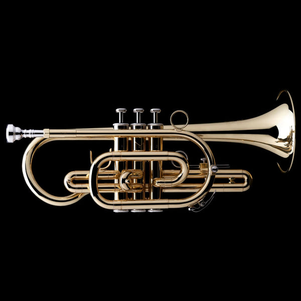 An image of a Bb Cornet from Wessex Tubas, facing right