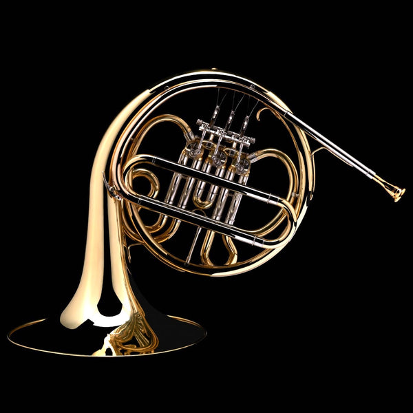 An image of a Bb French Horn (student) from Wessex Tubas (facing left)