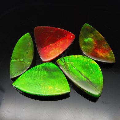Ammolite 64.81 cts 5 stones Wholesale Lot
