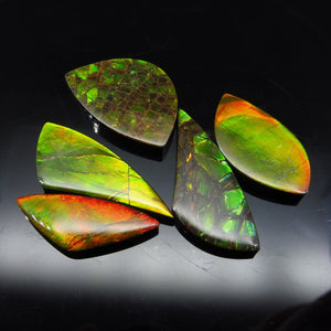 Ammolite 84.74 cts 5 stones Wholesale Lot