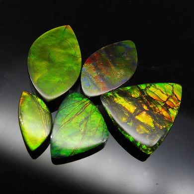 Ammolite 52.06 cts 5 stones Wholesale Lot