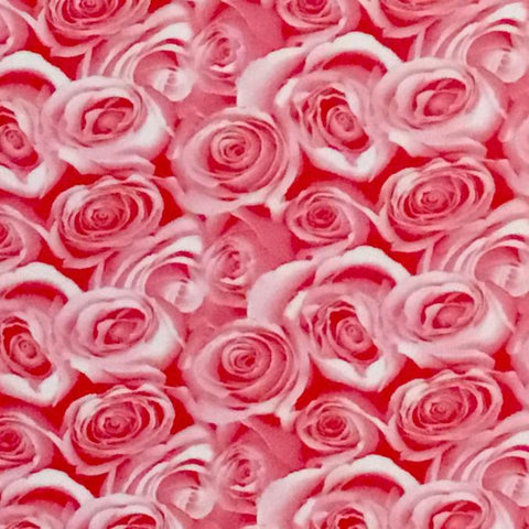 DIP WIZARD HYDROGRAPHIC DIP KIT PINK ROSES ON WHITE