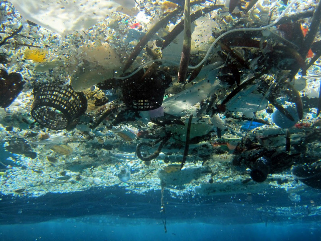 6 Most Common Types Of Litter Found In The Ocean