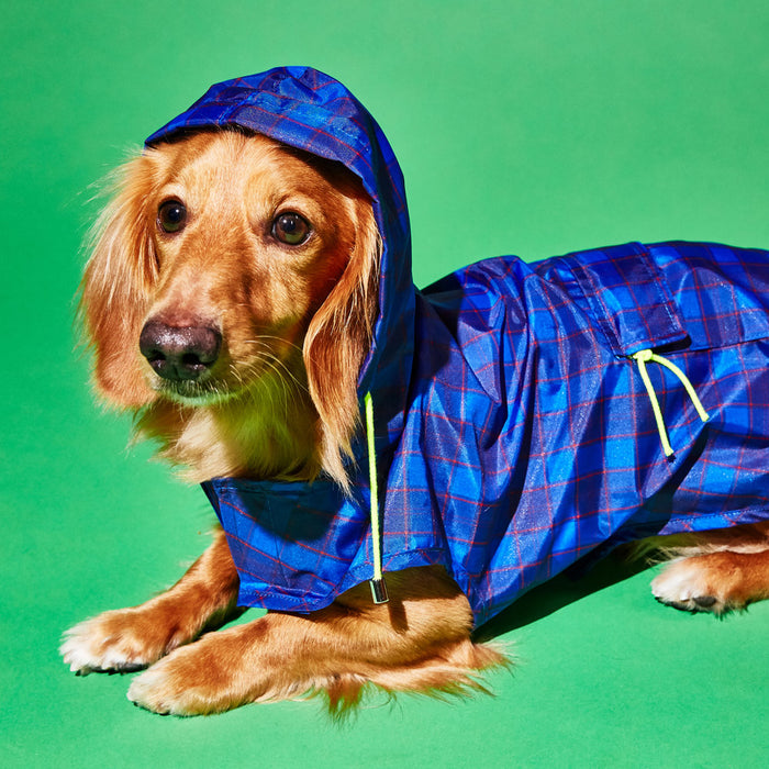 WARE OF THE DOG | Plaid Anorak Raincoat in Purple/Multi