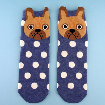 Adorable English Bulldog Face With Polka Dots Pattern Cotton Socks in Blue | DOTOLY | DOTOLY