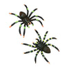 Painted Spiders (one dozen) - Toys