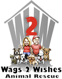 Wags 2 Wishes: June 8, 2019