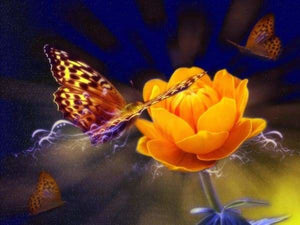 Flower Diamond Painting Kit - Flowers And Butterflies-Square 15x20cm- - Paint With Diamonds