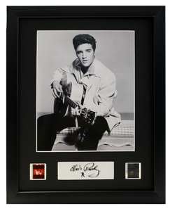 Elvis Presley - 2 Cell Display (8)