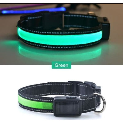 $22.00 - GLOW IN THE DARK DOG COLLAR - NIGHT SAFETY SOLAR CHARGE LED (7) TRAVEL PETS