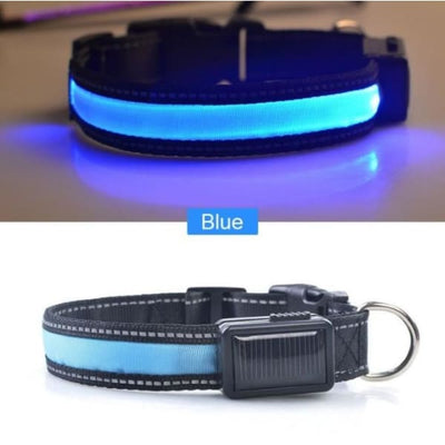 $22.00 - GLOW IN THE DARK DOG COLLAR - NIGHT SAFETY SOLAR CHARGE LED (12) TRAVEL PETS