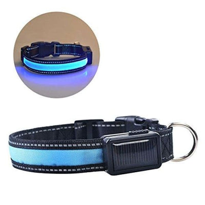 $22.00 - GLOW IN THE DARK DOG COLLAR - NIGHT SAFETY SOLAR CHARGE LED SMALL / BLUE 0KG (10) TRAVEL PETS