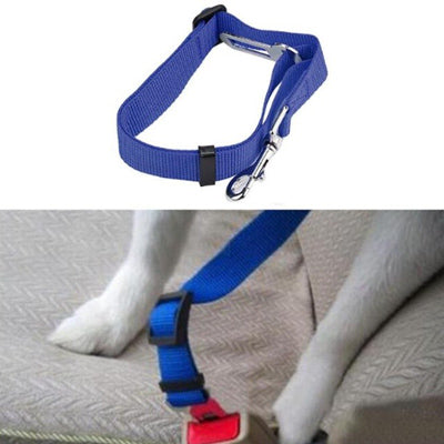 Premium Dog Seat Belt With Clip Blue Chihuahua Clothes and Accessories at My Chi and Me