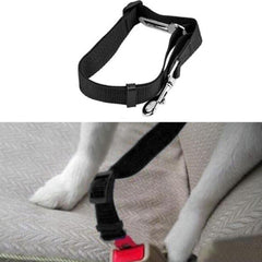 Premium Dog Seat Belt With Clip Black Chihuahua Clothes and Accessories at My Chi and Me