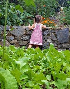 "Gardening with Kids: Kids Seed Co. ""Garden in a Bag"" seeds. Asheville, NC."