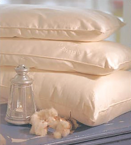 Organic Cotton Premium Vegan Pillow