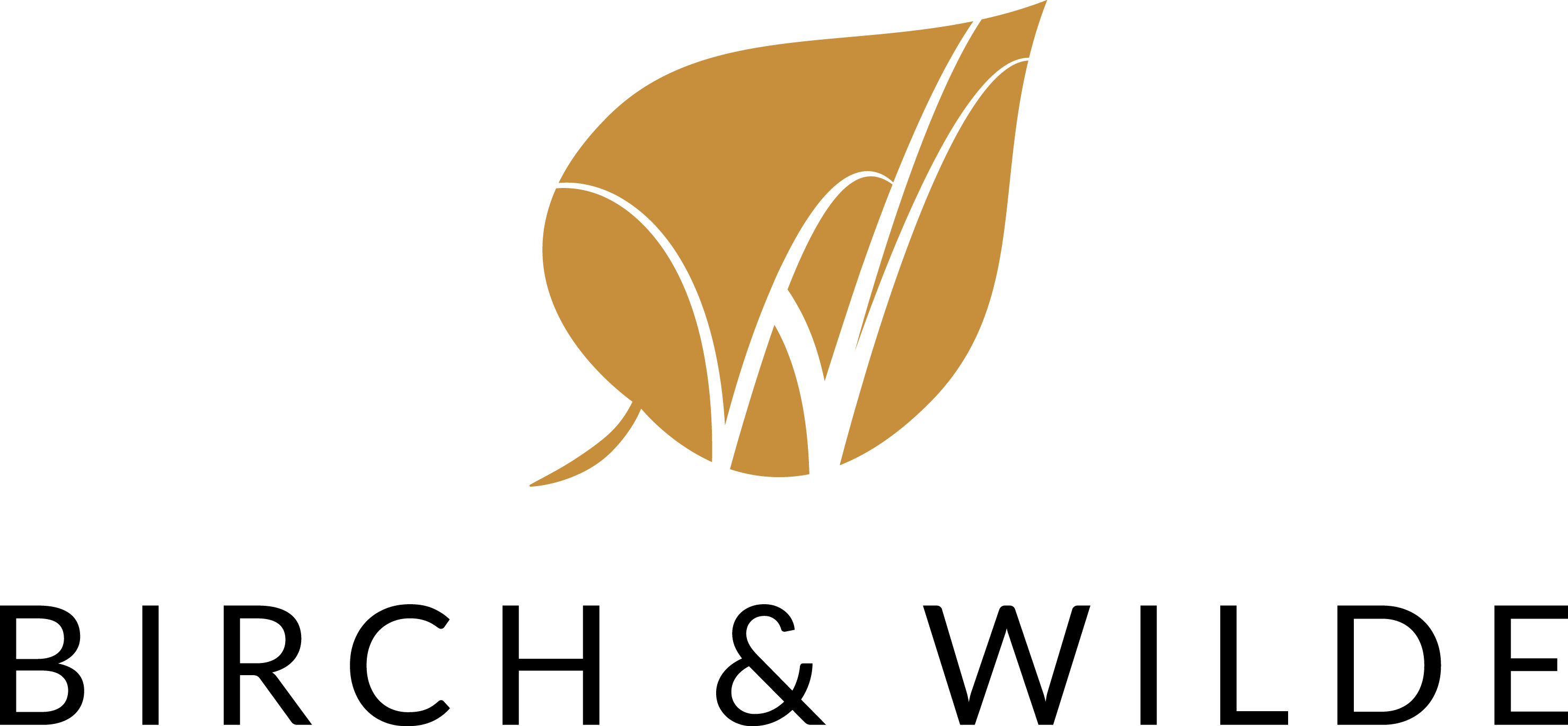 Birch & Wilde golden leaf logo