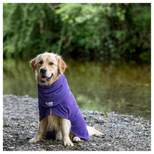 Dogrobe Purple - Dixie Doodles Pet Shop