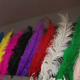 18 - 24 Inches Ostrich Dyed White Feather (1 Piece)