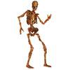 Halloween Party Supplies - Jointed Skeleton