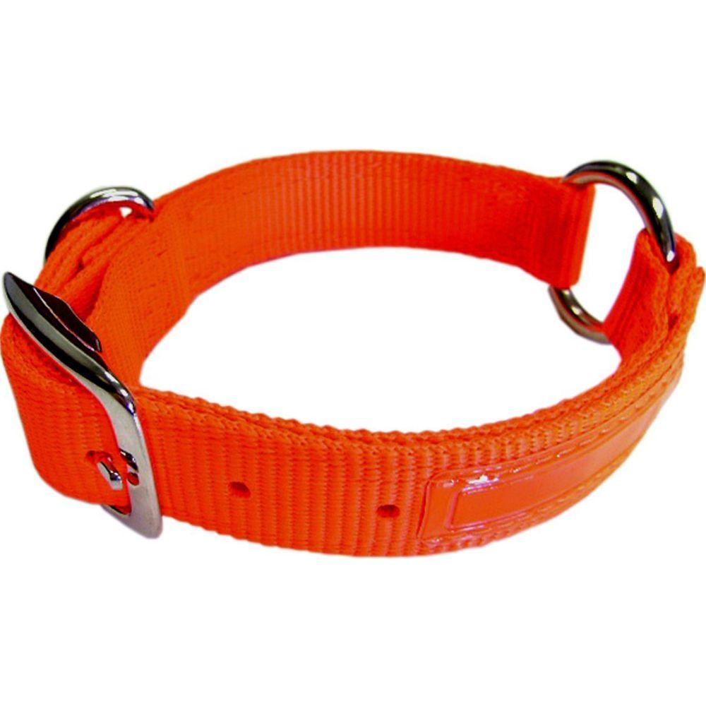 Safe-rite Dog Collar With Tape (Size 1x22 In. Orange.)