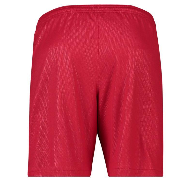 Portugal National Team Shorts Home-FIFA WC 2018 - sportifynow