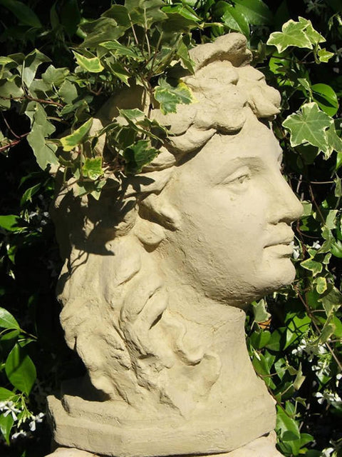Lady's Head Planter (Refined)