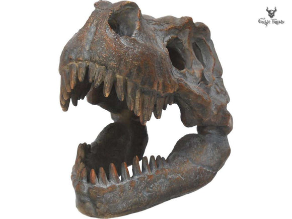 T-Rex Skull with jagged fangs exposed
