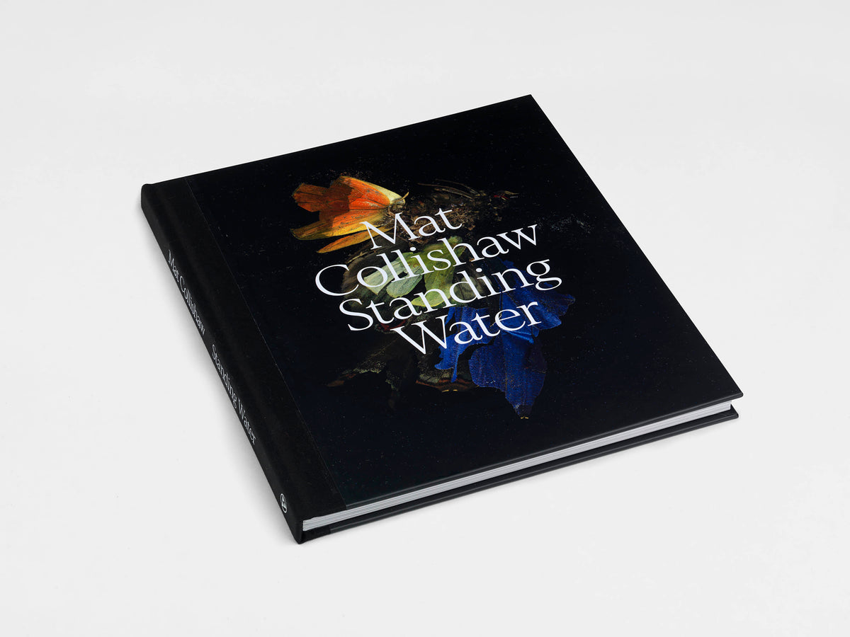 Mat Collishaw 'Standing Water' exhibition catalogue