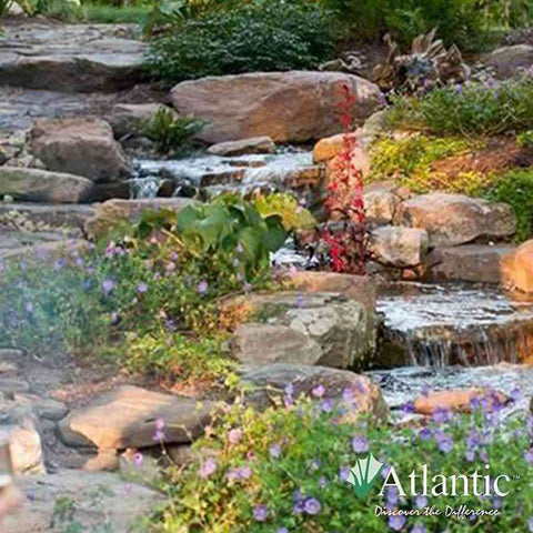 Atlantic Water Gardens Large Pond Kits-pond kit-Atlantic Water Gardens-Kinetic Water Features
