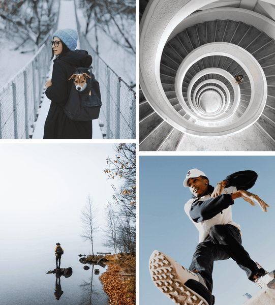 grid of four images with dog and spiral staircase