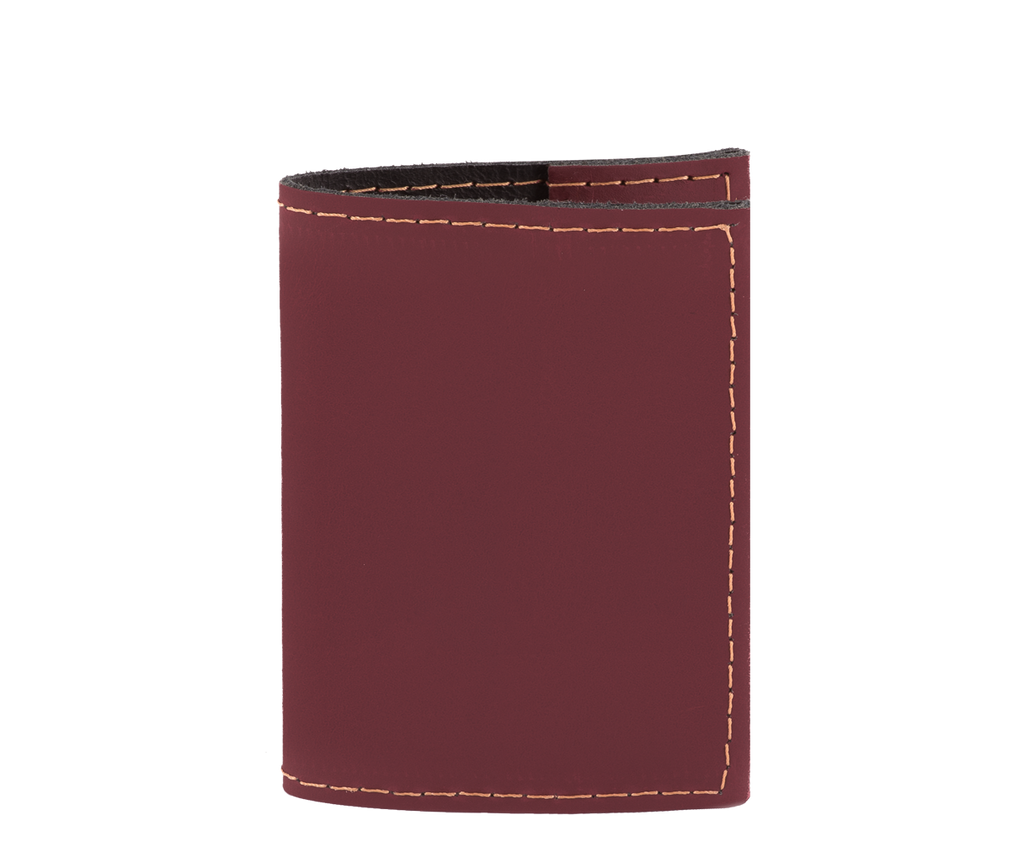 Guliver Passport Cover
