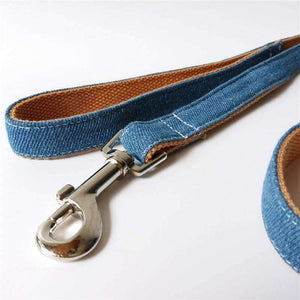 Rubio Rules | Blue Denim Leash | Dog Supplies