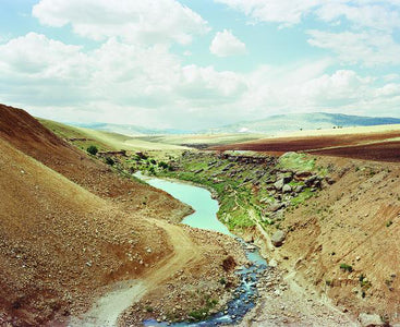 Mathias Depardon - Gold River