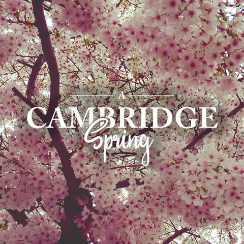 A Cambridge Spring
