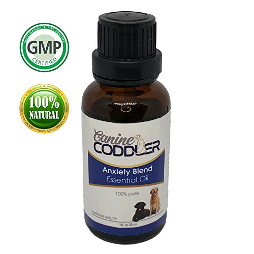 stress reducing oil for dogs