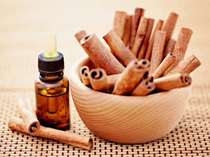 Cinnamon (psychic awareness, business success, protection)