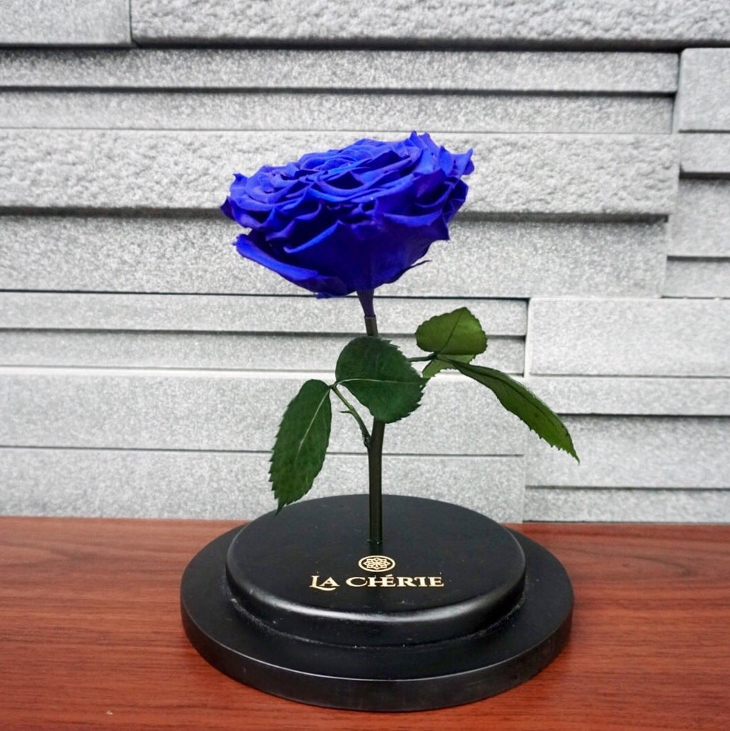 Beauty & the Beast Preserved Ecuadorian Rose: ROYAL BLUE
