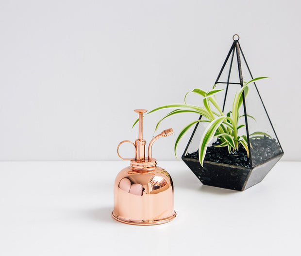 indoor plant delivery haws copper mister Melbourne Small, medium, large indoor plant pot