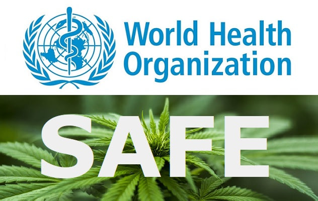 World Health Organization Reviews Safety of CBD