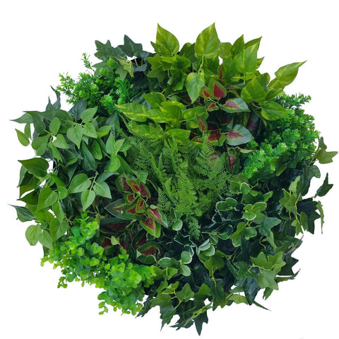 60cm 'Colour Splash' Vertical Garden Disc