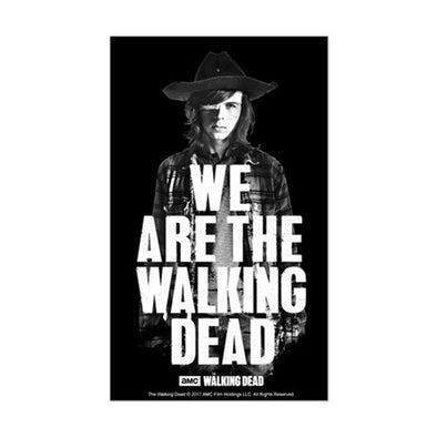 We Are The Walking Dead Sticker