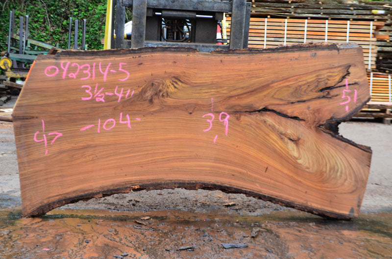 Oregon Red Elm Slab 042314-05