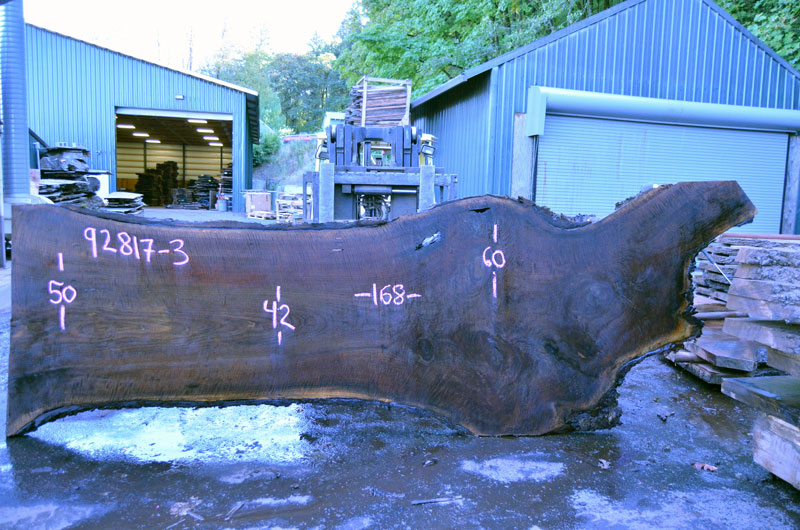 Oregon Black Walnut Slab 092818-03