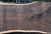 Oregon Black Walnut 100318-02