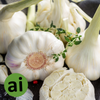 Garlic Oleoresin (Water Soluble) - Aromatic Ingredients