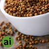 Coriander Oleoresin 10% - Aromatic Ingredients