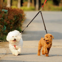 Two in One Dog Walking Leash