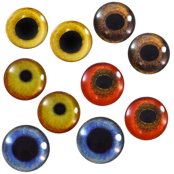 Bird Glass Eyes Bundle - 5 Pairs