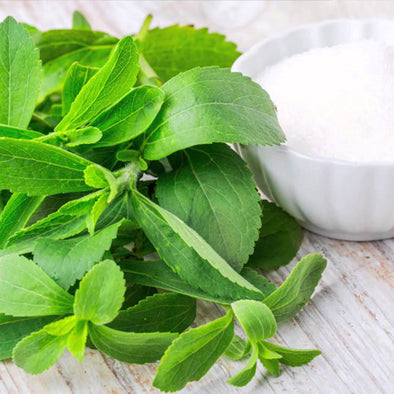 Why Stevia Is Essential To Your Vegan Protein